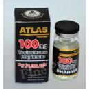 【ATLAS PHARMA】Tプロップ100(T Prop 100mg) 10ml